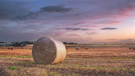 3rd Winwick Harvest by Ray Tickle
