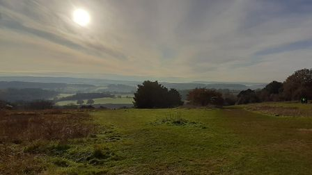 Famous view from Newlands Corner - Nov 2019 by Chris Howard - landscape
