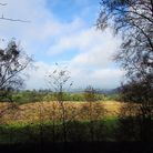 View from Bickerton Hill