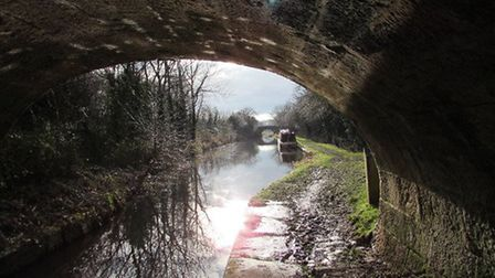 2015 Towpath of the Macclesfield Canal by Paul Taylor