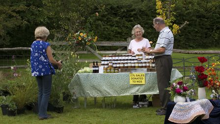 Some gardens have stalls of local produce, such as Old Thatch in Winchfield Photo: Leigh Clapp