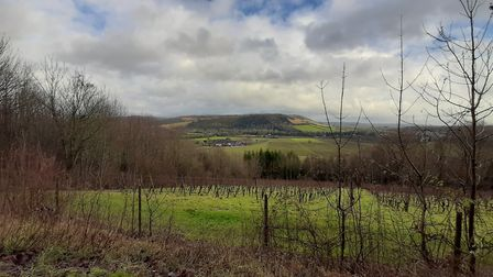 Winter view from Denbies to Box Hill by Chris Howard