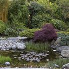 Carefully placed rocks and planting around the pond Photo: Leigh Clapp