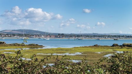 Looking north over Emsworth Channel to the Downs Photo: Paul Adams