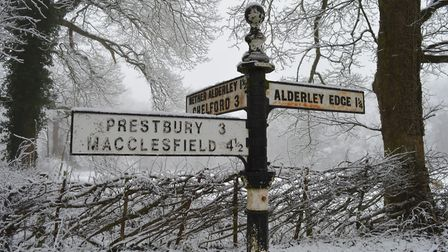 Alderley Edge, Cheshire in snow and fog.