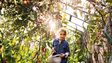 All the family can get involved with growing produce at home