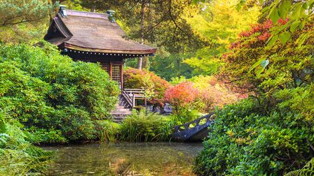 Created in the early years of the 20th century and restored in 2000/01, the Japanese Garden at Tatto