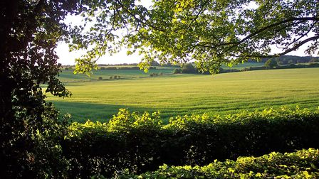 The 'gently undulating fields and hedges' of the last area of farmland in the borough, the site of a