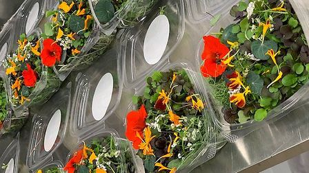 Freshly picked microleaves and edible flowers for perfect salads, from Field28 Photo: Kevin Dobbs