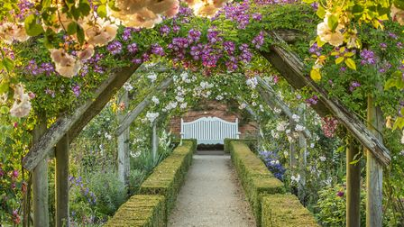 Mottisfont Abbey and its stunning rose garden are just one of the National Trust places now open for