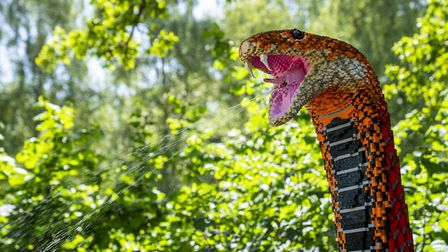Visit Marwell and see their new SUPERSIZED trail