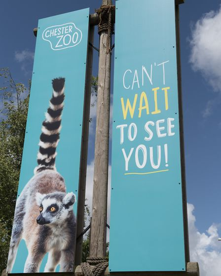 Chester Zoo welcomes back visitors Photo:John Snowdon