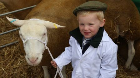 Young Henry Stayt shows the future of Moreton Show is in good hands