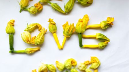 Courgette flowers can be stuffed or tempura battered for a fantastic starter. Photo: Greens of Devon