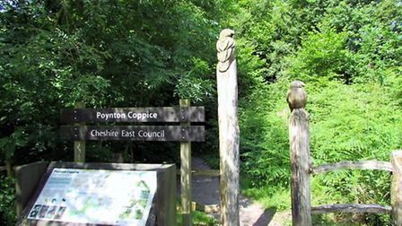 Entrance to Poynton Coppice by Paul Taylor