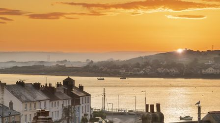 Appledore has staged the annual book festival for 15 years, Photo: Terry Mathews/Alamy Live News.