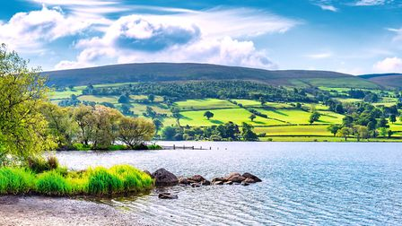 The head of Bala Lake, Llyn Tegid (c) travellinglight/Getty Images/iStockphoto