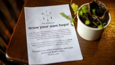 Jim has challenged the locals to grow hops with which he'll make a Beaford community beer next year