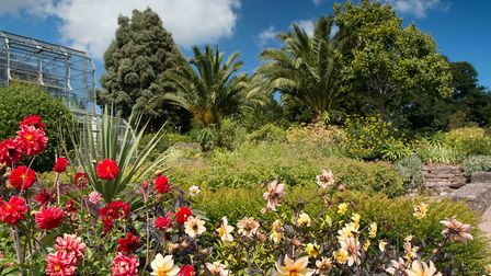 Torre Abbey Gardens in Torquay. Photo: Simon Hodgkiss/Torre Abbey/Torbay Council