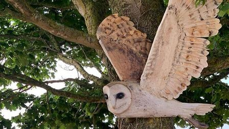 Barn Owl 'On The Hunt by Brendan Rawlings can be seen on the Darts Farm Sculpture Trail. Photo: Dart