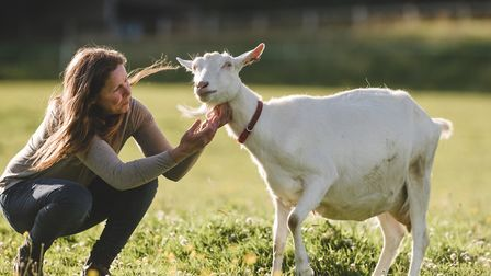 Claire Tilley and her goats: 'The ingredients are 100% natural so it doesn't get much better than th