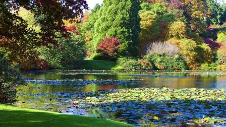 Autumnal glory at Sheffield Park. Photo: Leigh Clapp