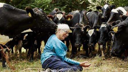 Cheese maker Mary Quicke with some of her dairy cows