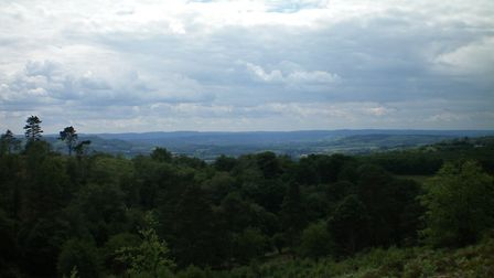 View from Blackdown looking south-west. Photo: Margaret Brecknell