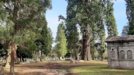 Brookwood cemetery is the largest burial ground in the UK. Image: Chris Howard