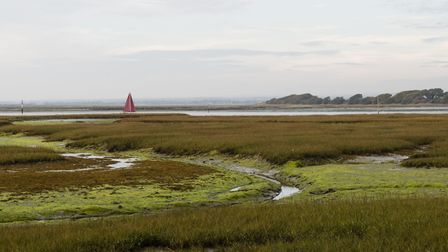 Yacht heads home past Chaldock Marsh at low tide (Photo: Deirdre Huston)
