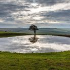 A dew pond, at Ditchling Beacon in East Sussex. Photo: Getty Images/iStockphoto