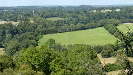 View north towards Hawkley (church tower visible left of centre)