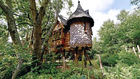 Higgledy Treehouse at Blackberry Wood, Ditchling