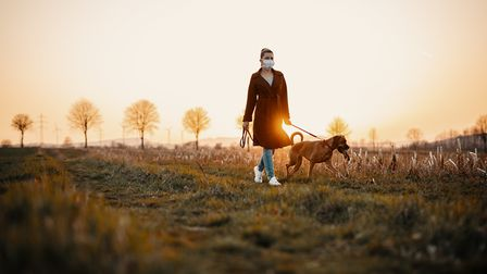Take a walk this autumn and help Hearing Dogs for Deaf People