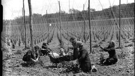 Hop workers in Ewhurst, East Sussex in 1937. Photo: Newsquest Sussex Ltd/courtesy of The Keep