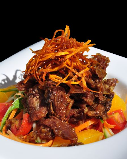 Crispy duck salad with julienne vegetables, cucumber, orange garnish and sweet and sour dressing at