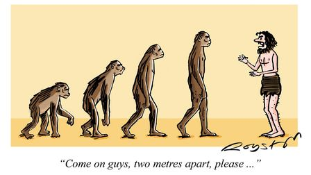 Evolution of Man - complete with social distancing