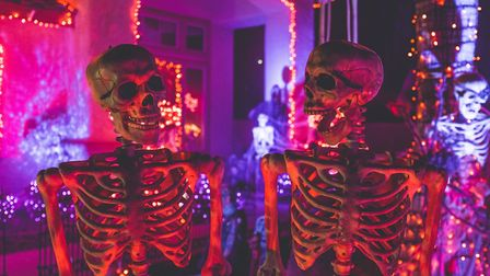 Halloween events in Sussex - Photo by NeONBRAND on Unsplash