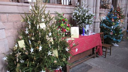 Decorative Christmas trees in Crediton's Christmas Tree Festival. The town celebrates its associatio
