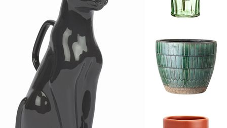 Houseplant accessories to suit your style: Black panther watering can, Price: £34.95, mintandmay.co.