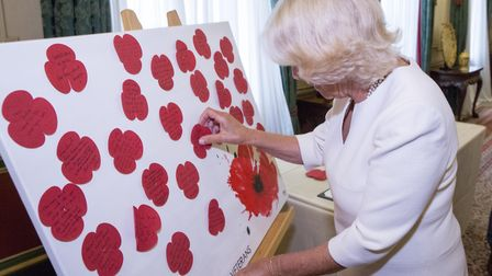 The Duchess of Cornwall hosts a reception in her home at Clarence House in 2018 for the Poppy Facto