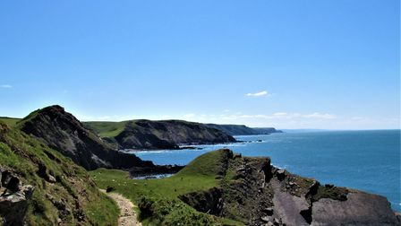 The South West Coast Path in North Devon, not far from Hartland Quay. Photo: Simone Stanbrook-Byrne