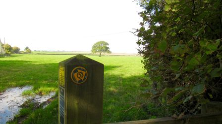 The Tarka Trail near North Tawton; the logo of the path is an otter?s paw print. Photo: Simone Stanbrook-Byrne
