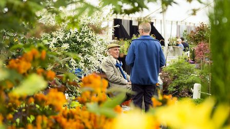 The flower tent is a popular part of the Show. Photo: Devon County Show