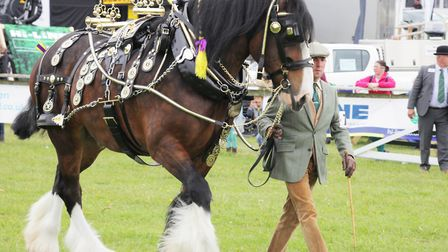 Competition schedules for the 2021 Show will be available in the spring. Photo: Devon County Show