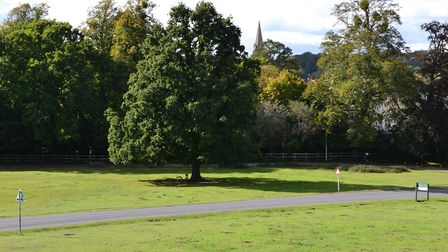 View from Bolton's Bench across Lyndhurst to the spire of St Michael & All Angels glimpsed through t