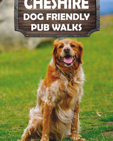 Cheshire Dog Friendly Pub Walks by David Dunford