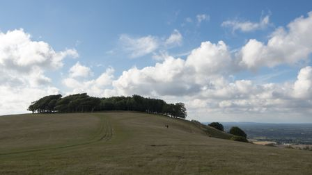 Chanctonbury Ring with distant walkers. Photo: Deirdre Huston