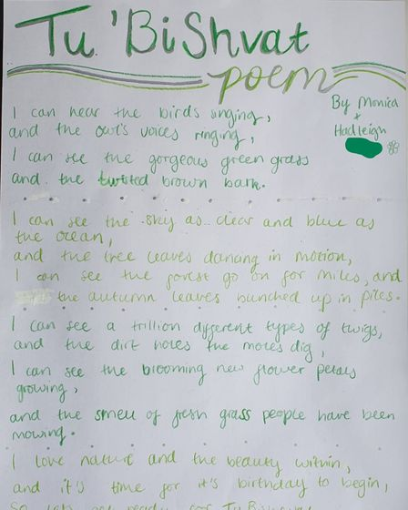 Young people submitted poems to the seder.