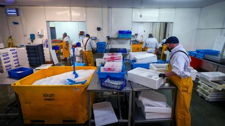 Staff at Midland Fish in Fleetwood prepare fish for sale at the docks in Fleetwood, Lancashire